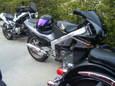 2010_04180029