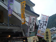 2010_04180036