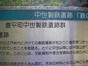 2010_05160022