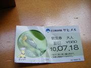 2010_07180032