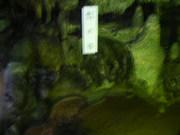 2011_05030044
