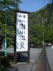 2011_05050035