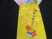 2011_06030001
