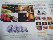 2011_06300002