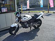 2011_10160001