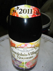 2011_11210003