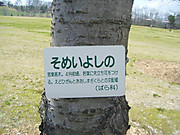 2012_04010042_2