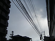 2012_12060002