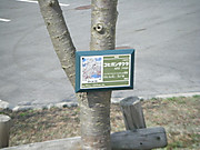 2013_04010033