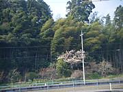 2013_04140251