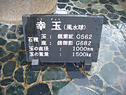 2013_05030019
