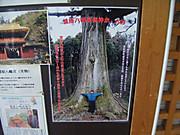2013_05030074