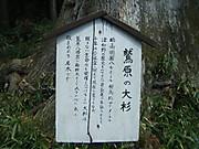 2013_05030089