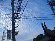 2013_09060001